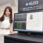 В iPad 3 будут использоваться дисплеи IGZO