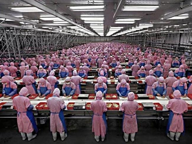 Рабы Pegatron или как собирают продукцию Apple