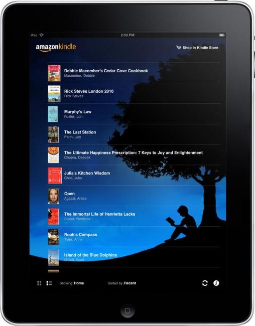 выбор книг для чтения на Ipad