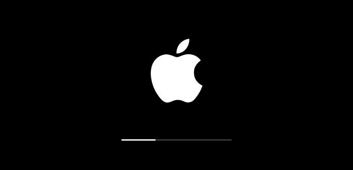 Логотип компании «Apple» на экране телефона