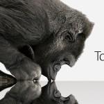 Apple сотрудничает с компанией Corning и использует Gorilla Glass