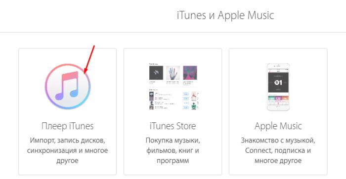Служба поддержки Apple